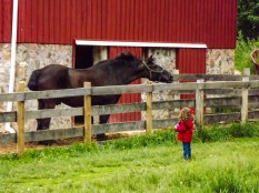 the little girl and the horse 2 (1 of 1)