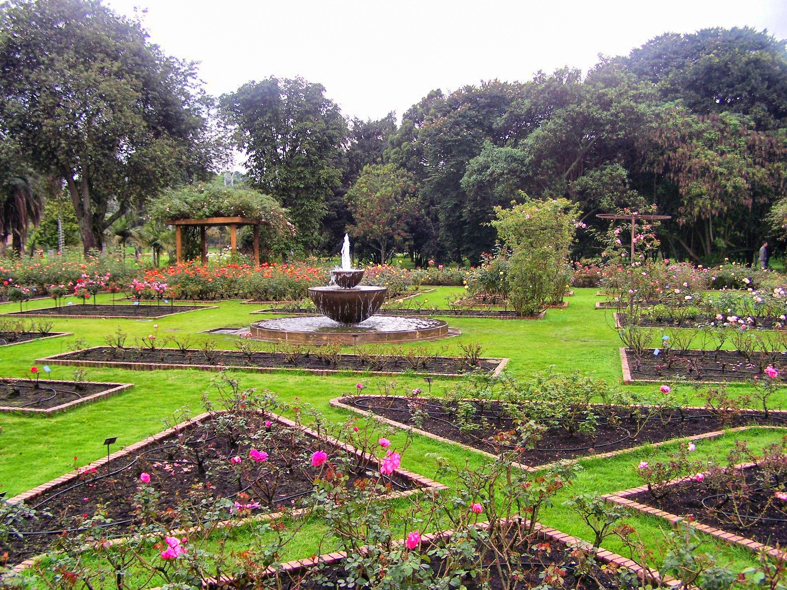 One of my favorite places in the world bogota botanical garden jardin botanico de bogota for Jardin 00 garden