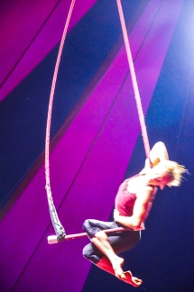 trapeze1_color (1 of 1)