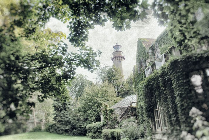 evanston tree 8 lighthouse (1 of 1)